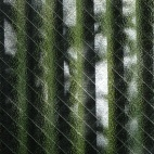 Nuances de vert